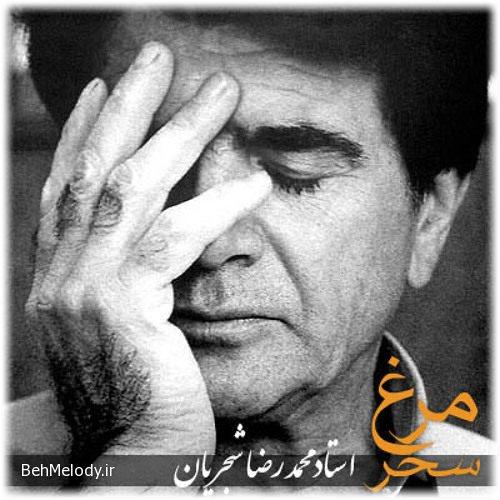 آهنگ فوق العاده مرغ سحر از محمدرضا شجریان