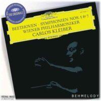 دانلود آهنگ شنیدنی Ludwig van Beethoven به نام Symphony No 5