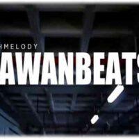 دانلود آهنگ شنیدنی Zawanbeats به نام BLCKVKZ