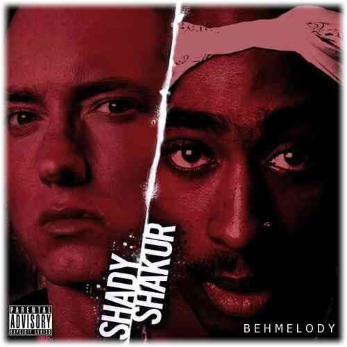 2Pac Ft Eminem New Song You Don't Want Me
