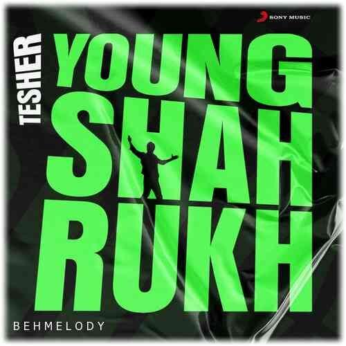 دانلود آهنگ شنیدنی Tesher به نام Young Shahrukh