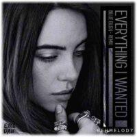 دانلود آهنگ ریمیکس Billie Eilish به نام Everything I Wanted (Remix)
